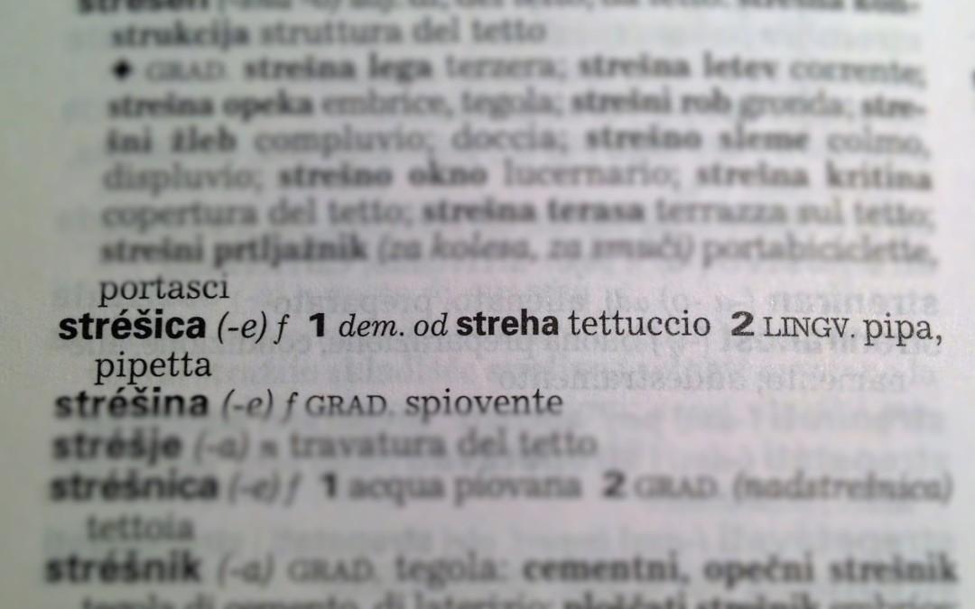 Č, Š, Ž, il duale e qualche risvolto per le traduzioni tecniche